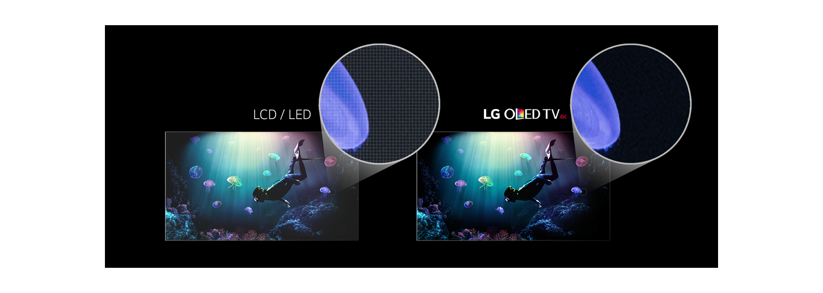 OLED vs LCD Comparison